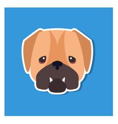 dolorous muzzle of english bulldog drawn art icon vector image