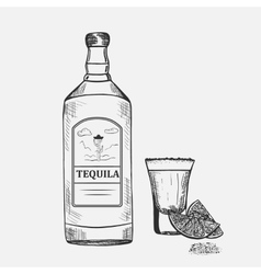 Hand drawn composition with tequila vector image
