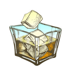 Color square glass with rum brandy and ice cubes vector