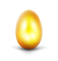 Golden egg on white background vector