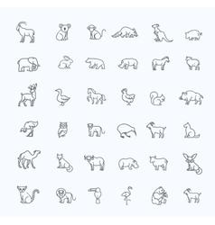 Icons zoo animals vector