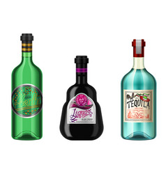 realistic alcohol drinks in a bottle with vector image