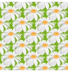 Seamless background of camomile Large flowers on vector image vector image