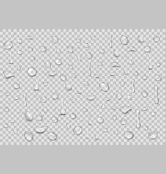 Water drops transparent background clean drop vector