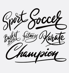 champion and sport hand written typography vector image