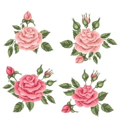 Floral elements with vintage roses Decorative vector image vector image