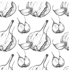 garlic handdrawn seamless pattern in the vector image
