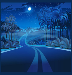 road through the jungle at night vector image