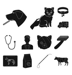 Veterinary clinic black icons in set collection vector