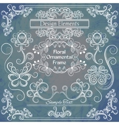 floral design elements on shabby background vector image