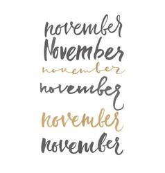 lettering hand lettering nov different forms vector image