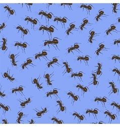 Animal Pattern Ant Isolated vector