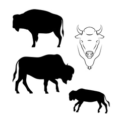 Bison silhouettes vector image