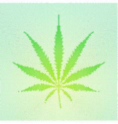 cannabis marijuana vector image