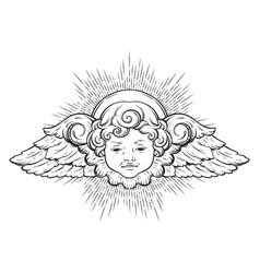 Cherub cute winged curly smiling baby boy angel vector