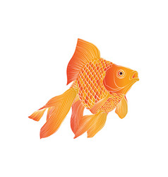 Golden fish-02 vector