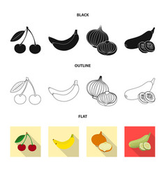 isolated object of vegetable and fruit sign vector image