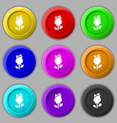 Rose icon sign symbol on nine round colourful vector