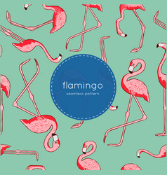 seamless pattern with flamingo vector image