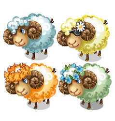 Set of four cartoon sheep with different accessory vector