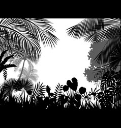 tropical silhouette background beautiful vector image