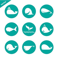 group of whale in the circle vector image