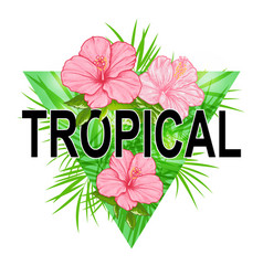 abstract floral triangle tropical background vector image