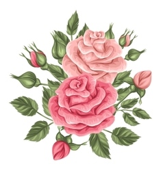 Floral element with vintage roses Decorative vector image