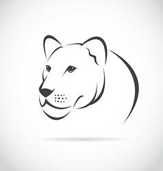 image of an female lion head vector image