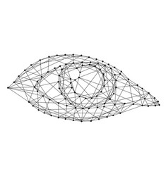 open female eye of monochrome from vector image