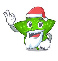 santa mascot cartoon beautiful ivy leaf plant vector image