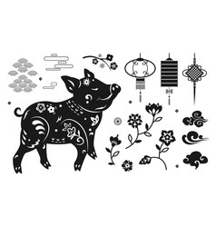 Set of elements pig paper lantern flowers vector
