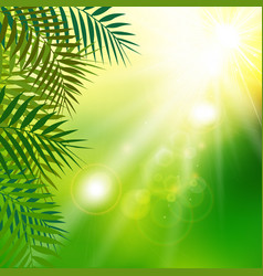 Summer fresh green leaves with sunlight on vector