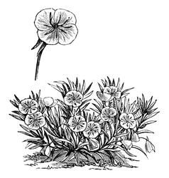 Missouri Evening vintage engraving vector image vector image