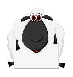 sheep cartoon sit with sign vector image vector image