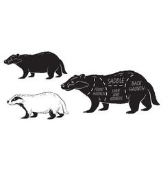 Cut of badger set poster butcher diagram - desert vector