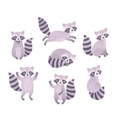 cute raccoons sleeping sitting playing vector image