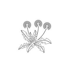 dandelion flat icon vector image