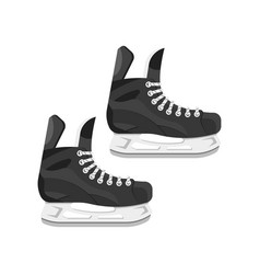 flat style of skates vector image