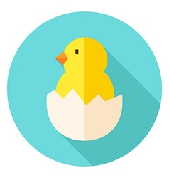 Hatched Chick in Eggshell Circle Icon vector