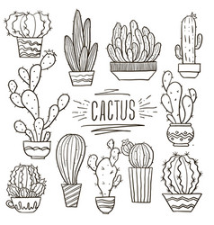 set cacti doodle hand drawn vector image