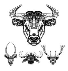 Set hand drawn animal sketch vector