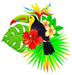 bright tropical composition with toucan palm and vector image vector image