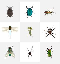 Realistic bug dor arachnid and other vector