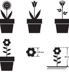 Flowers in pots and flower size scheme vector image