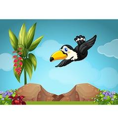 Toucan flying in the garden vector image vector image