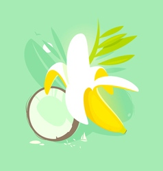 banana coconut vector image