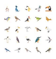 cartoon birds flat set vector image