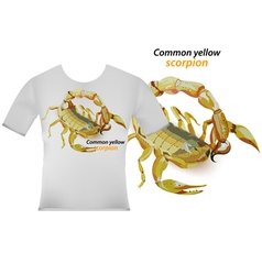 Common yellow scorpion on t shirt vector