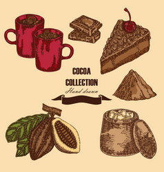 Hand drawn cocoa beans cocoa pod chocolate cake vector